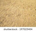 Sea Sand With Footprints