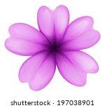 illustration of a lavender...