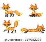 set image of cute little fox in ... | Shutterstock .eps vector #197052239