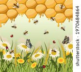 illustration with insects and... | Shutterstock .eps vector #1970684864