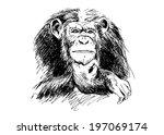 Hand Drawing Chimpanzees....