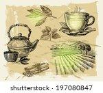 vector hand drawn tea on paint... | Shutterstock .eps vector #197080847