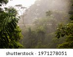 """View Of The Hanging Bridges In """"..."""