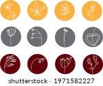 unusual plant  icon... | Shutterstock .eps vector #1971582227