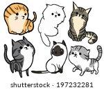 Stock vector cat set maine coon american short hair siamese cat persian scottish fold exotic 197232281