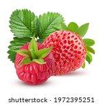 Strawberries And Raspberries...