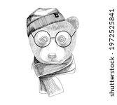 hand drawn portrait of bear... | Shutterstock .eps vector #1972525841