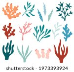 seaweeds set. collection of... | Shutterstock .eps vector #1973393924