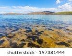 Seaweed In The North Atlantic...