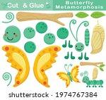 butterfly metamorphosis cartoon.... | Shutterstock .eps vector #1974767384