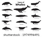 set of different types of... | Shutterstock .eps vector #1974996491