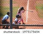 Baseball Hitter View Through...