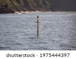 Yellow Sea Buoy Floating In The ...