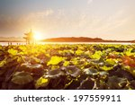 Scenery Of West Lake With...