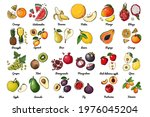 vector food icons of fruits....   Shutterstock .eps vector #1976045204