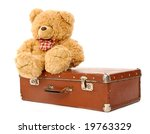Teddy Bear   Suitcase