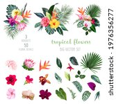 exotic tropical flowers  orchid ... | Shutterstock .eps vector #1976356277