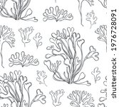 hand drawn edible  algae.... | Shutterstock .eps vector #1976728091