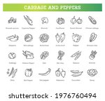 cabbage and peppers beneficial... | Shutterstock .eps vector #1976760494