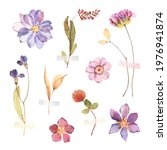floral set with colorful... | Shutterstock . vector #1976941874