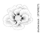 beautiful monochrome black and... | Shutterstock .eps vector #197698271