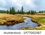 mountain grassland landscape...   Shutterstock . vector #1977002387