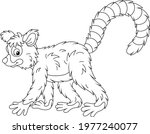 exotic tropical madagascar ring ... | Shutterstock .eps vector #1977240077