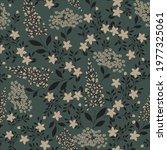vector  flower seamless ... | Shutterstock .eps vector #1977325061