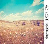 Big Stones In Sand Hills Of...