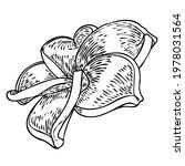 plumeria open buds. traditional ... | Shutterstock .eps vector #1978031564