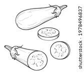 hand drawn eggplant  half a...   Shutterstock .eps vector #1978496837