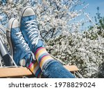 Trendy Sneakers And Bright...