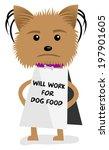 yorkie dog puppy will work for... | Shutterstock .eps vector #197901605
