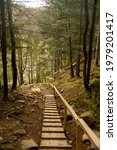 A Wooden Staircase In The...