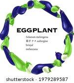 vegetable circle  eggplants...   Shutterstock .eps vector #1979289587