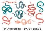 mystic snakes. boho magic...   Shutterstock .eps vector #1979415611