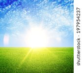 Fresh Green Grass And Blue Sky