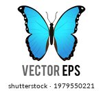the vector isolated beautiful... | Shutterstock .eps vector #1979550221