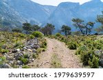 mountain trail with rocks and... | Shutterstock . vector #1979639597