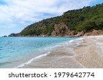 beautiful beach with blue water ... | Shutterstock . vector #1979642774