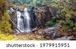 Stevensons Falls in the Great Otways National Park in Victoria, Australia