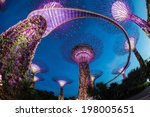 the supertree at gardens by the ... | Shutterstock . vector #198005651