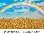 View Of Wheat Field With...