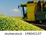 Harvester Combine And Green...