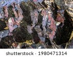 Unusual Colouration In The Rock ...