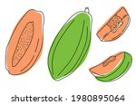collection of exotic papaya... | Shutterstock .eps vector #1980895064