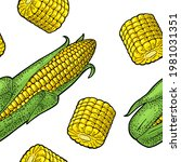 seamless pattern ripe corn cob...   Shutterstock .eps vector #1981031351