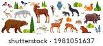 woodland forest animals birds...   Shutterstock .eps vector #1981051637