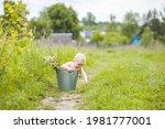 rural baby portrait. toddler in ... | Shutterstock . vector #1981777001