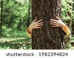 Woman Hugging Old Tree In...